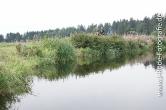 Harzer Hexentrail 2015_311